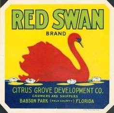 Vegetable Crates, Florida Oranges, Southern Sayings, Vintage Labels, Vintage Ads, Vintage Art Prints, Vintage Florida, Vintage Advertisements, Retro Ads