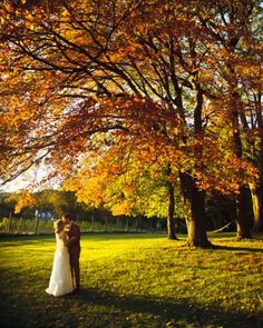 Newlyweds+Melissa+and+Adam+pose+for+portraits+in+front+of+an+oak+tree+full+of+fall+shades+in+Glen+Mills,+Pennsylvania.