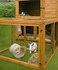 Rabbits need a large weatherproof home that is raised off the ground. Their hutch should be big enough to allow them to lie down and stretch out comfortably in all directions, tall enough for them to stand up on their back legs without their ears touching the top, and long enough to allow at least three hops.