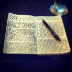 noxelm:  Breakin' in a new journal tonight. :3