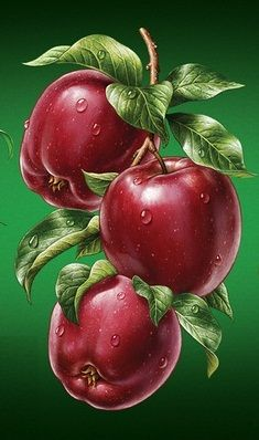 Wonderful shiny apples.