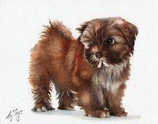 Original Oil Art Portrait Painting LHASA APSO Artist Signed Artwork DOG PUPPY