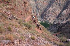 #MuleTrain coming up #SouthKaibab trail, #GrandCanyon AZ