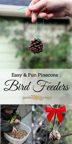 Feeding birds does not have to be difficult!  How to make DIY pine cone bird feeders