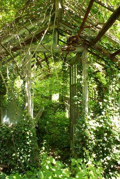 Old green house caumsett park