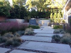 A wall of trees encloses this enchanting garden. A concrete walkway weaves through ornamental grasses in a natural pebble bed. Stairs, stone walls and concrete walls add levels and texture.