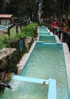 Parque Zoológico, Chorros de Milla, Edo. Mérida, Venezuela, fundada en 1953.