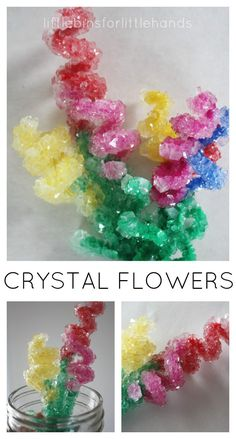 Make beautiful, sparkling crystal flower bouquets for Spring. Crystal flowers activity is also a suspension science experiment. Try crystal flowers science! Science Crafts, Preschool Science, Science For Kids, Science Projects, Projects For Kids, Crafts For Kids, Easy Science, Fair Projects, Science Nature