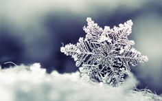 Preview wallpaper snow, snowflake, winter