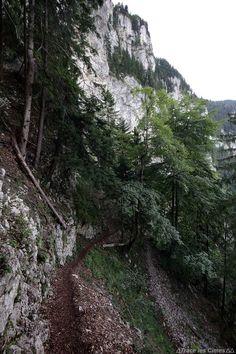 Sentier de randonnée vers La Chartreuse de Curière - Massif de la Chartreuse - Montagne Nature Isère Alpes
