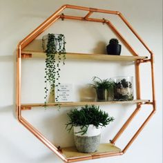 Copper pipe clothing rail / garment rack / clothing storage with ladder - Copper Tubing, Copper Pipes, Clothes Rail, Garment Racks, Clothing Storage, Pvc Pipe, Rose Gold Color, Diy Garden Decor, Display Shelves