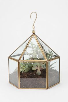 want them alllllll - planing to make location themed terrariums