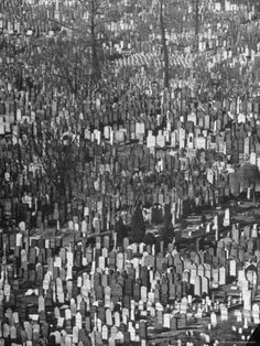 Cemetery - literally miles and miles of grave stones. BROOKLYN may be known has the borough of churches, but Queens has the dubious honor as the borough of Cemeteries, Cemetery Monuments, Cemetery Headstones, Old Cemeteries, Cemetery Art, Graveyards, Queen Poster, Famous Graves, Catacombs, Secret Gardens