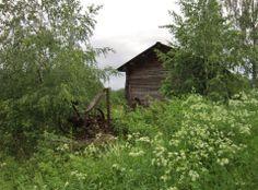 Kesäkuvakisa 2014  yle.fi
