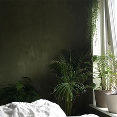 We love green and so do who has created a magic peaceful fairytale in her bedroom. Fresco in the color Olive Drab on the walls Olive Bedroom, Bedroom Green, Modern Bedroom Design, Contemporary Bedroom, Home Decor Bedroom, Bedroom Wall, Bedroom Ideas, Olive Green Rooms, Cozy Small Bedrooms