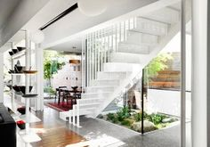 that-house-austin-maynard-architects-6