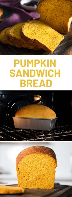 Pump kin Up Your Sandwich Bread Game Make this yeast-raised pumpkin bread a part of your holiday baking routine Savory Bread Recipe, Savory Pumpkin Recipes, Sandwich Bread Recipes, Pumpkin Yeast Bread Recipe, Artisan Bread Recipes, Yeast Bread Recipes, Bread Jam, Pumpkin Loaf, Sandwiches