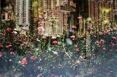A belíssima dupla exposição de Hayden Williams