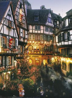 Winter at Alsace, France. My family is from Alsace. I need to visit! Places Around The World, Oh The Places You'll Go, Places To Travel, Around The Worlds, Wonderful Places, Beautiful Places, Belle France, Petite France, Future Travel