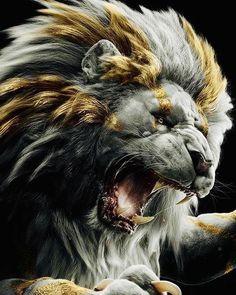 Aggressive Lion Lion Images, Lion Pictures, Lion Wallpaper, Animal Wallpaper, Lion Sketch, Lion Photography, Lion Love, Lion Painting, Tiger Art