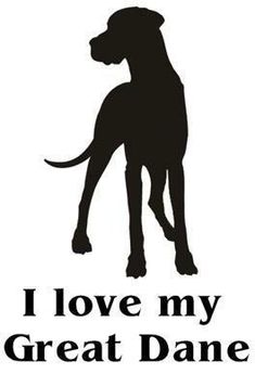 And what about you?) #great #dane #art