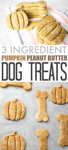 Dog Breeds Little Three ingredient DIY pumpkin peanut butter dog treats!Dog Breeds Little Three ingredient DIY pumpkin peanut butter dog treats! Puppy Treats, Diy Dog Treats, Healthy Dog Treats, Pumpkin Treats For Dogs, Pumpkin Recipes For Dogs, Healthy Meals, Dog Treats Grain Free, Dog Biscuit Recipes, Dog Treat Recipes