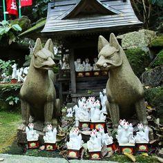 Do you know this little sanctuary dedicated to Inari in Kamakura ? A great surprise to discover that beyond the path!  Est ce que vous connaissez ce petit sanct dédié à Inari à Kamakura ? C'était une belle surprise de le découvrir au bout du chemin perdu dans la forêt !  #japan #japon #kamakura #kamakurajapan #sasukeinarishrine #inari #shinto #shrine #fox #hikingadventures #travel #visitjapanfr #japanlover #japan_of_insta #japanphoto #japantrip #japangram #explorejpn #eos70d #japankudasai