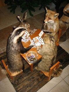 Playing animals