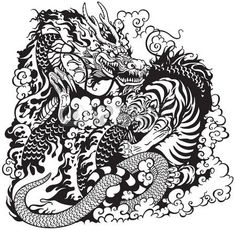 Illustration about Dragon and tiger fighting, black and white tattoo illustration. Illustration of strong, energy, legend - 48640619 Dragon Tiger Tattoo, Tiger Dragon, Dragon Art, Dragon Tattoos, Japanese Tiger, Japanese Dragon, Chinese Dragon, Dragon Illustration, Japanese Illustration