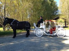 Shenandoah Carriage Company. Fall Rides with the pumpkin princess at Great Country Farms!