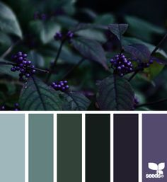 design seeds | nature tones | for all who ♥ color