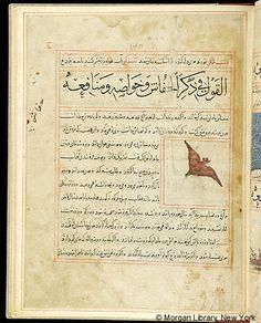 Bestiary, Iran, Maragheh, 1297-1298 or 1299-1300, and 19th century- The Morgan Library & Museum