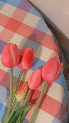 Look Wallpaper, Cute Pastel Wallpaper, Flower Phone Wallpaper, Cute Patterns Wallpaper, Aesthetic Pastel Wallpaper, Scenery Wallpaper, Kawaii Wallpaper, Wallpaper Iphone Cute, Aesthetic Backgrounds