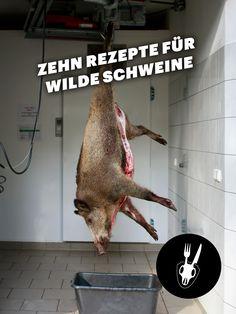 Das Fleisch von Wildschweinen hält, was grüne Siegel im Bioladen teuer versprechen: die Tiere leben frei und selbstbestimmt, fressen was sie wollen und werden nicht mit Medikamenten behandelt. Wild…