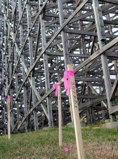 Stakes are popping up all around one of Holiday World's beloved wooden roller coasters. What's at stake? We'll tell you soon.