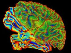 Nano memory cell can mimic the brain's long-term memory - http://scienceblog.com/78472/nano-memory-cell-mimic-brains-longterm-memory/