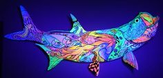 Custom Fish Mounts by Artist Kelly Reark. This one is painted with special UV reactive paint. Here it is lit with a UV Black Light. www.KellyReark.com