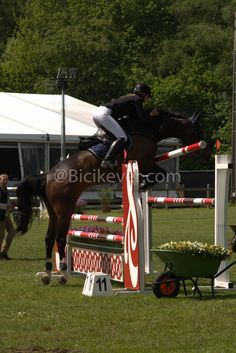 Lekker Springen Thema Paarden Kleuters Horse Theme