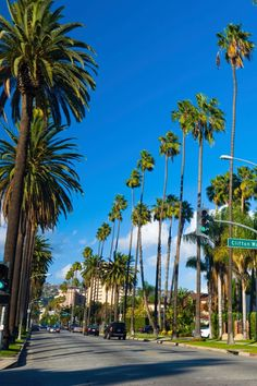 Do You Know That More Than 50 Million Tourists Visit Los Angeles Every Year? So, allow me to introduce you to Best places to visit in Los Angeles. Cool Places To Visit, Places To Travel, Places To Go, Travel Destinations, Mystery Hotel, Los Angeles Wallpaper, Photographie New York, Los Angeles Travel, City Of Angels