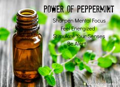 Does Aromatherapy Really Offer Any Health Benefits? | Loving Essential Oils.  http://www.lovingessentialoils.com/blogs/essential-oil-tips/65991299-does-aromatherapy-really-offer-any-health-benefits  Another interesting aromatherapy find is that peppermint is quite a potent scent. Peppermint sharpens your mental focus, enabling you to concentrate and feel alert. In one study, kids who chewed peppermint gum while taking tests received higher scores than students who chewed any other flavor.