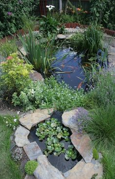Garden with pond See more like this at www.BuildAPond.net