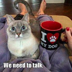 We need to talk...