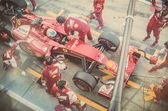 Formula 1 - Fernando Alonso - Ferrari - GP Monza 2014 - daniphotodesign.com