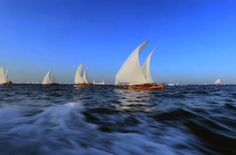Al Gaffal Traditional Dhow Sailing Race, 2013