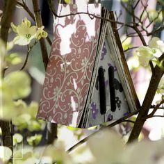 #unabellagiornata 96/365 Il segreto è non correre dietro alle farfalle. È curare il giardino perché loro vengano da te. (Mário Quintana) #butterflyhome #cornus