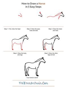 how-to-draw-a-horse35.png (600×776)