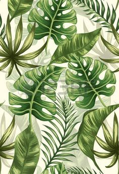 Tropical flower decorations to be put in different places of the house are very easy to make. Use mainly palm leaves, hibiscuses, geraniums, some dried twigs and vases of course. Tropical Art, Tropical Leaves, Tropical Flowers, Tropical Plants, Jungle Pattern, Tropical Pattern, Leaf Art, Botanical Illustration, Vector Art