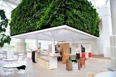 THE CAFÉ TREE - Fridbjørg Architects