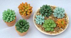 Gatito Azul Miniaturas: Tutorial miniatura planta suculenta