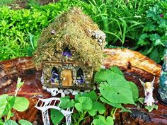 Like the moss roof, we have tons of moss to do this with